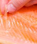 osso salmão